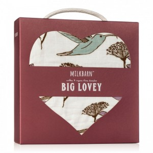 MB lovey hummingbird boxed